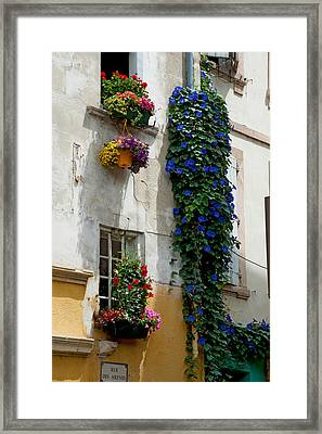 Building With Flower Pots On Each Framed Print by Panoramic Images