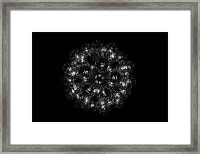 Bulbly Framed Print by Charlie Tash