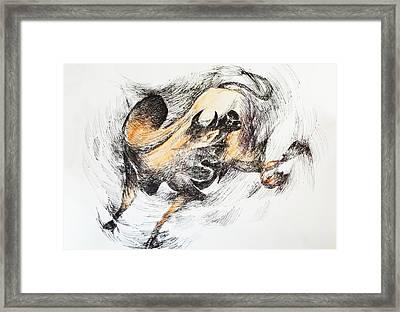 Bull-2 Framed Print by Bhanu Dudhat