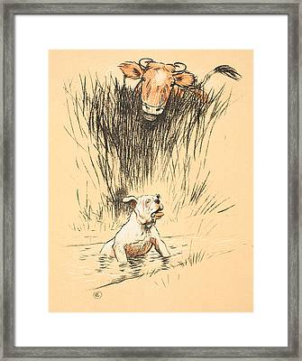 Bull And Dog In Field Framed Print by Cecil Charles Windsor Aldin