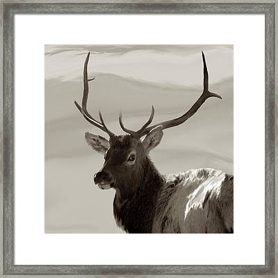 Bull Elk Freehand Sepia Framed Print by Ernie Echols