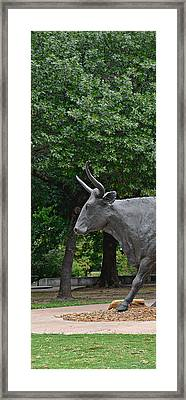 Bull Market Quadriptych 1 Of 4 Framed Print by Christine Till