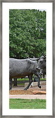 Bull Market Quadriptych 2 Of 4 Framed Print by Christine Till