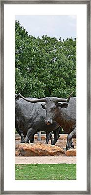Bull Market Quadriptych 3 Of 4 Framed Print by Christine Till