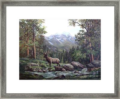 Bull Meadow Framed Print by W  Scott Fenton
