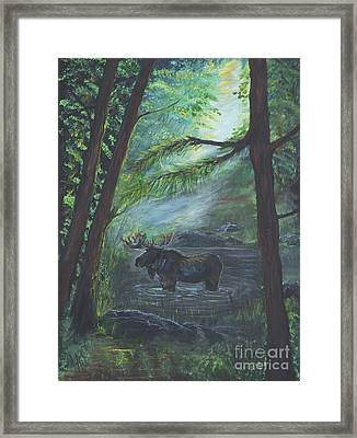 Bull Moose Pond Framed Print
