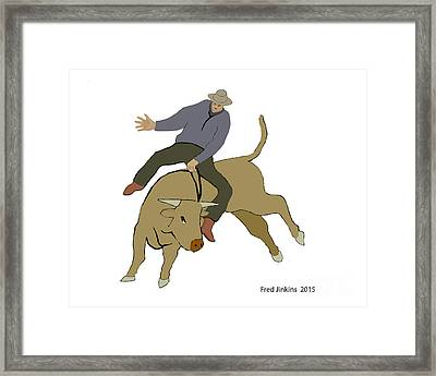 Bull Riding Framed Print by Fred Jinkins