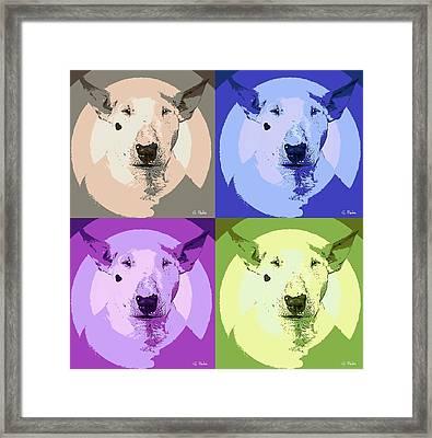 Bull Terrier Pop Art Framed Print by George Pedro