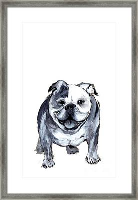 Bulldog  Framed Print by Barbara Marcus
