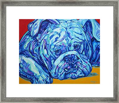 Bulldog Blues Framed Print