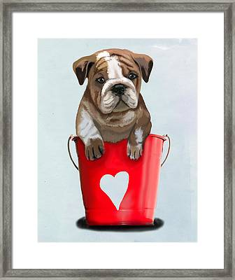 Bulldog Buckets Of Love Framed Print