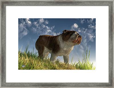 Bulldog Framed Print by Daniel Eskridge