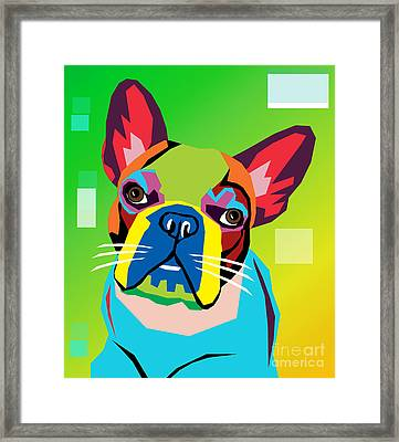 Bulldog  Framed Print by Mark Ashkenazi