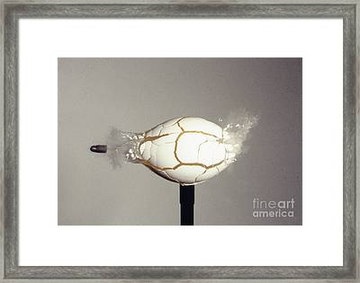 Bullet Piercing Egg Framed Print
