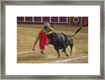 Bullfighter Manuel Ponce Performing The Estocada To Kill The Bull Framed Print by Perry Van Munster