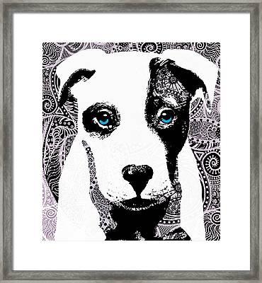 Bully Framed Print by Cindy Edwards
