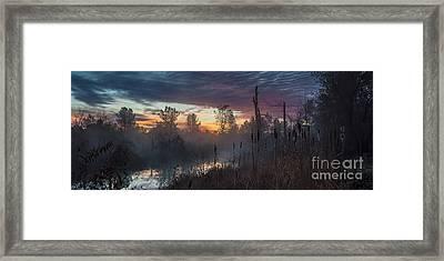 Bulrush Sunrise Full Scene Framed Print
