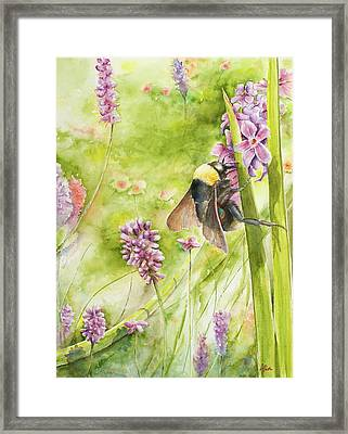 Bumble Framed Print by Arthur Fix
