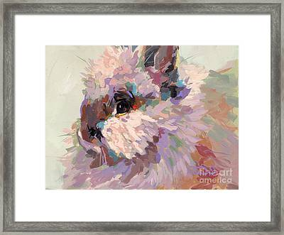 Bun Framed Print by Kimberly Santini