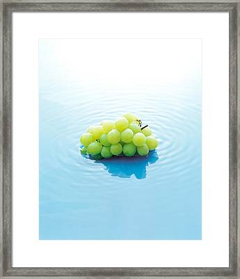 Bunch Of Grapes Floating On Water Framed Print by Panoramic Images