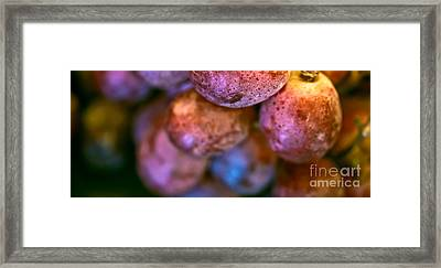 Bunch Of Grapes Panorama Framed Print by Patricia Bainter