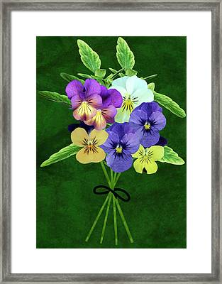 Bunch Of Pansies (viola Sp.) Framed Print by Archie Young