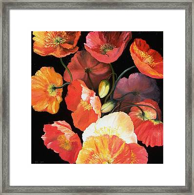 Bunch Of Poppies Framed Print by Jan Matson