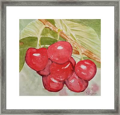 Bunch Of Red Cherries Framed Print