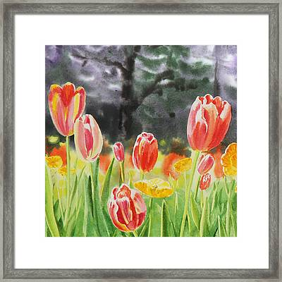 Bunch Of Tulips IIi Framed Print by Irina Sztukowski