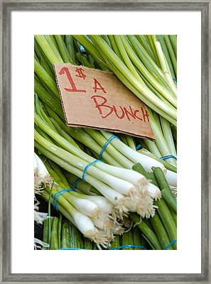Bunches Of Onions Framed Print by Teri Virbickis