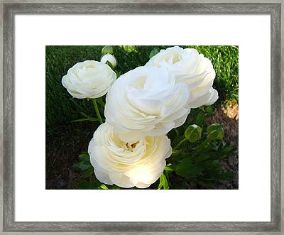 Framed Print featuring the photograph Bundle Of White by Tamara Bettencourt