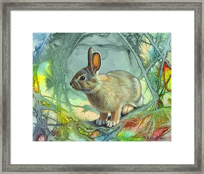 Bunny In Abstract Framed Print by Paul Krapf