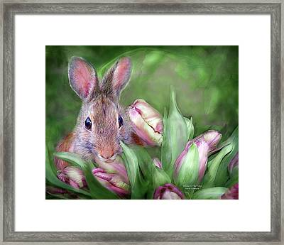 Bunny In The Tulips Framed Print by Carol Cavalaris