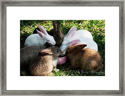 Bunny Tea Party Framed Print