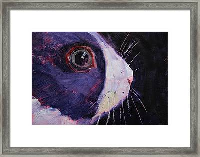Bunny Thoughts Framed Print by Nancy Merkle