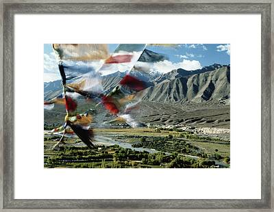 Bunting Flying In Sky With Kunlun Framed Print