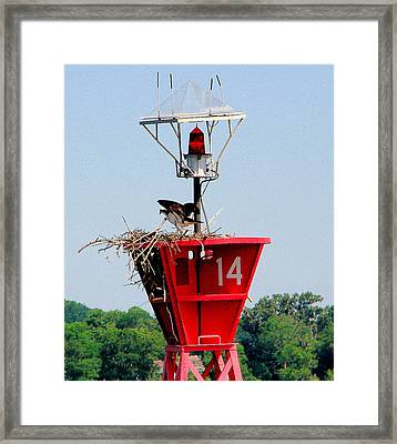 Buoy On Severn River Near Annapolis Maryland Framed Print