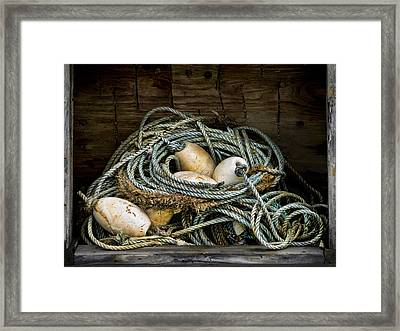 Buoys In A Box Framed Print by Carol Leigh