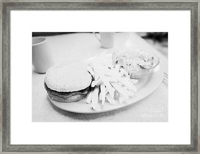 Burger Crinkle Cut Fries And Salad In A Cheap Diner In North America Framed Print by Joe Fox
