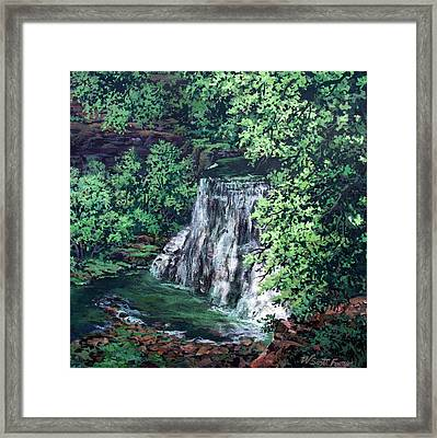 Burgess Falls State Park Tn. Framed Print by W  Scott Fenton