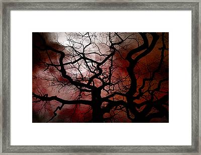 Reaching For The Moon Framed Print
