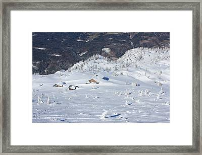 Buried In The Drift Framed Print