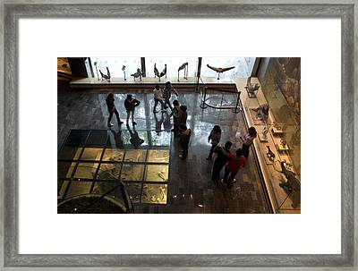 Framed Print featuring the photograph Buried Treasures by Lynn Palmer