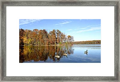 Burke Lake Park In Fairfax Virginia Framed Print