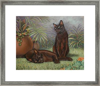 Framed Print featuring the painting Burmese Beauty by Cynthia House