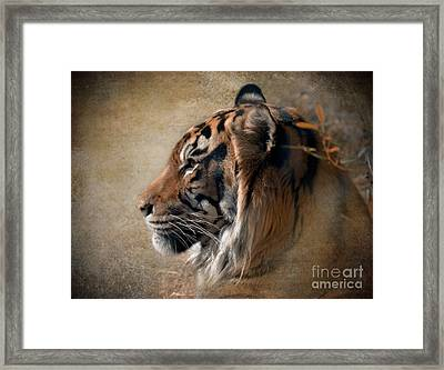 Framed Print featuring the photograph Burning Bright by Betty LaRue
