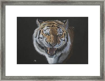 Burning Bright - Siberian Tiger Framed Print