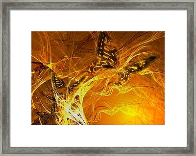 Burning Butterflies Framed Print by Ela Zakrzewska
