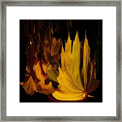 Burning Fall Framed Print by Jouko Lehto