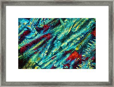 Burning Ice Framed Print by Tom Phillips